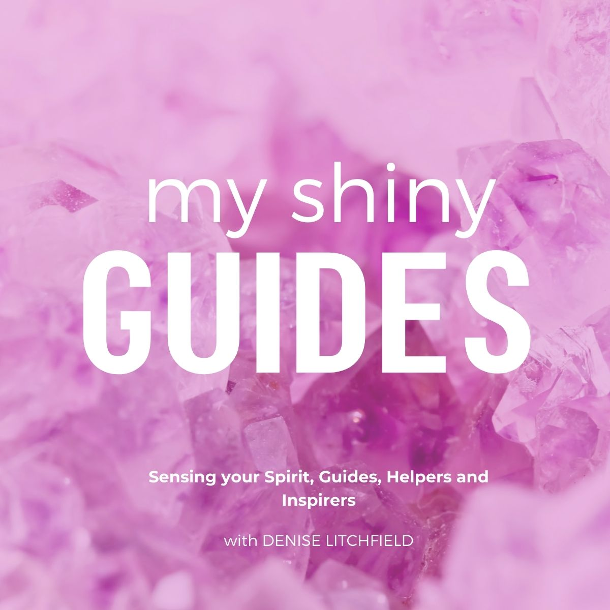 My Shiny Guides